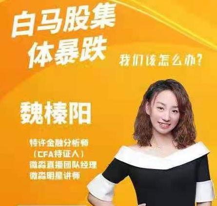 魏臻阳老师加餐视频《白马股暴跌》视频回放2021.07.11